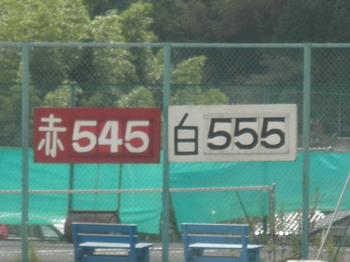 P9150571-1.jpg